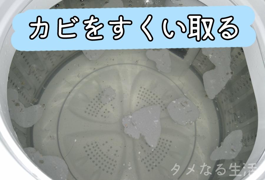 洗濯槽に浮くカビ