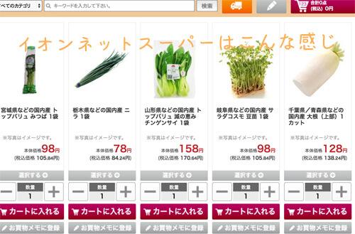 イオンネットスーパーの画面